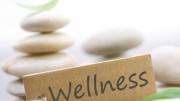 wellness-y-estabilidad