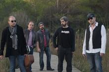 Beluga Blues Band