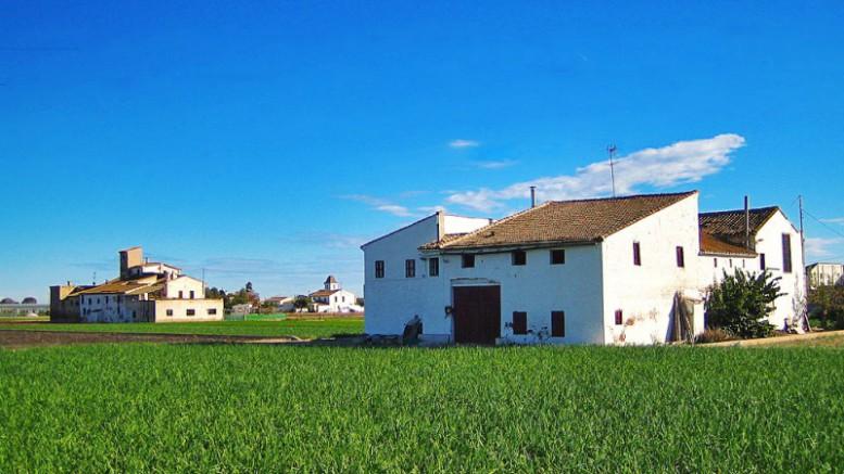 El PSPV critica el recorte de Rajoy en las subvenciones a los seguros agrícolas