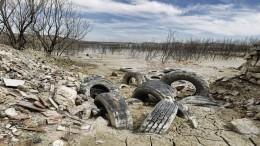 Pantano afectado por la falta de lluvia