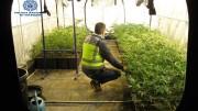 Una de las naves donse se cultivaban las plantas de marihuana