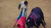 Cayetano torea en redondo a 'Jumito', toro de Juan Pedro Domecq en la última de Fallas 2016.