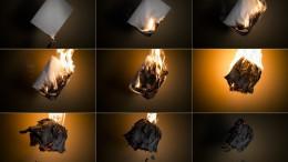 Ejemplar del Diari Indultat quemado