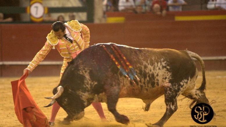 David Mora con el toro sardo 'Alabardero', al que cortó una oreja.