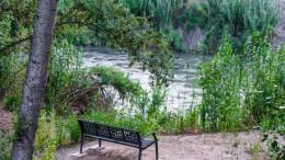 Els alumnes d'Alzira recuperen la vegetació de ribera al Riu Xúquer