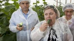 Los socialistas europeos presentan una resolución para rechazar la reducción de controles de plagas sobre los cítricos importados de terceros países