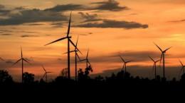 El Consell avança en la nova Estratègia Valenciana d'Energia i Canvi Climàtic