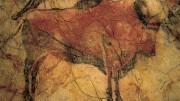 Cultura organiza las jornadas '100 años de arte rupestre en Castellón