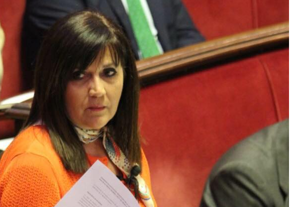 María Dolores Jimenez ha censurado hoy las críticas realizadas a la Policía Local de Valencia en el Consejo Local de Inmigración,