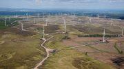 Iberdrola , Parque eolico de Whitelee (Escocia)