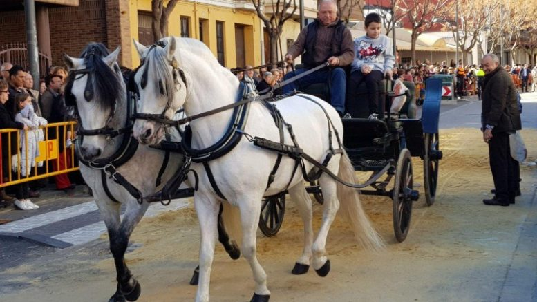 Chirivella incluye el sarao de música popular valenciana a la fiesta de San Antón