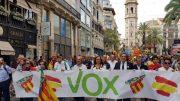 """Vox Valencia """"Vox no tiene nada que ver con el video racista publicado en el diario Levante-EMV"""""""